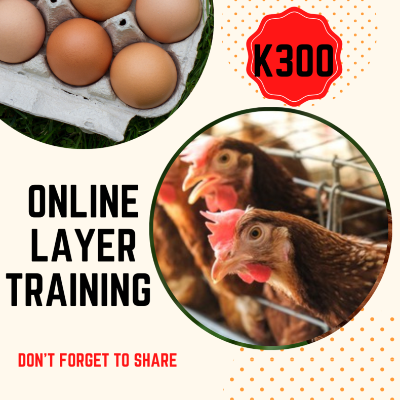 Online Poultry Farming Training